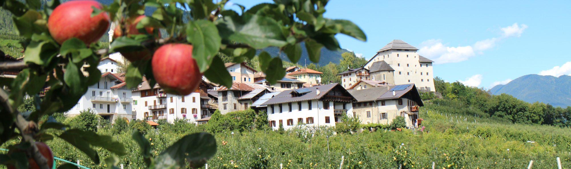 Castel-Caldes_Foto-Andreis-Dario (4)